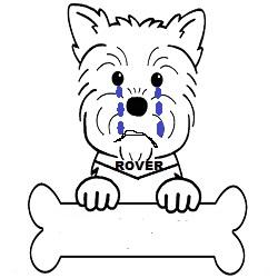 sad-rover